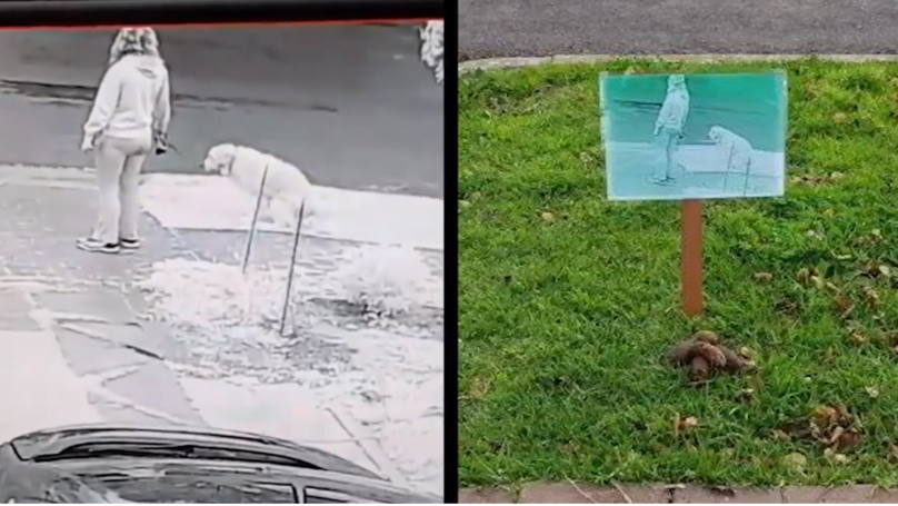 ​Man Uses CCTV To Shame Owners Who Left Dog Poo In Front Of His House