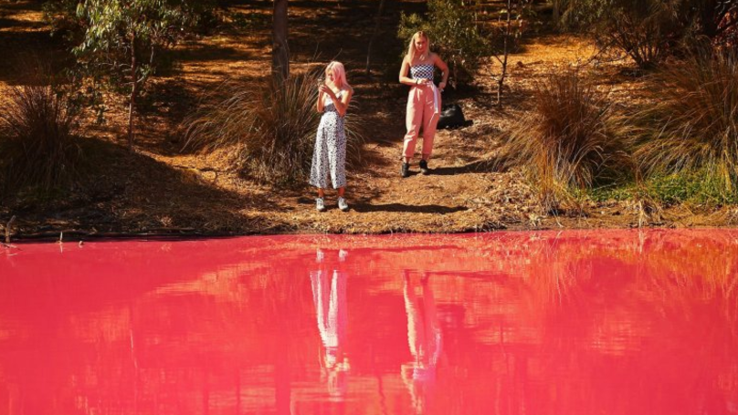 Incredible Pictures Show How An Australian Lake Turns Pink In Summer