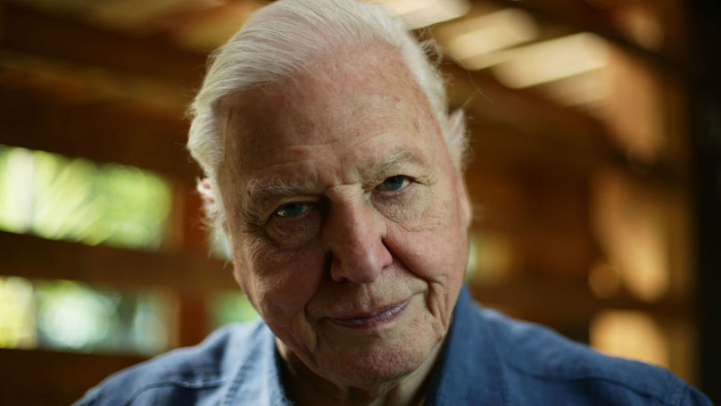 Throwback To The Time Sir David Attenborough Took On A Snake