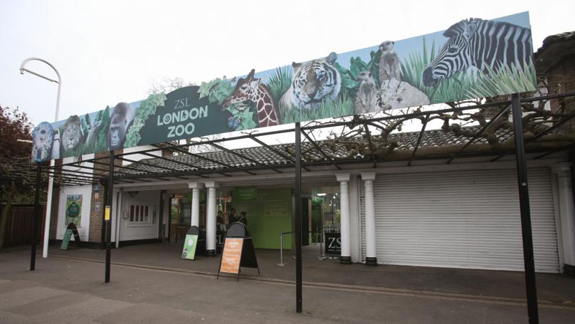 Firefighters Battling Blaze At London Zoo
