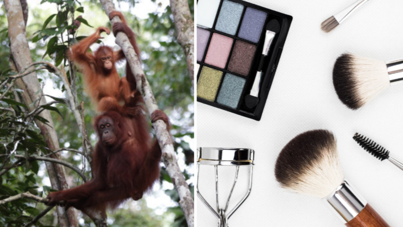 I Tried To Cut Palm Oil From My Home And Beauty Routine - Here's What Happened