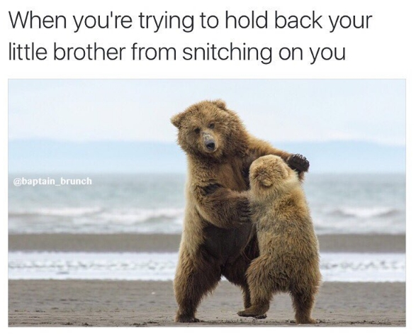 Siblings are the worst...