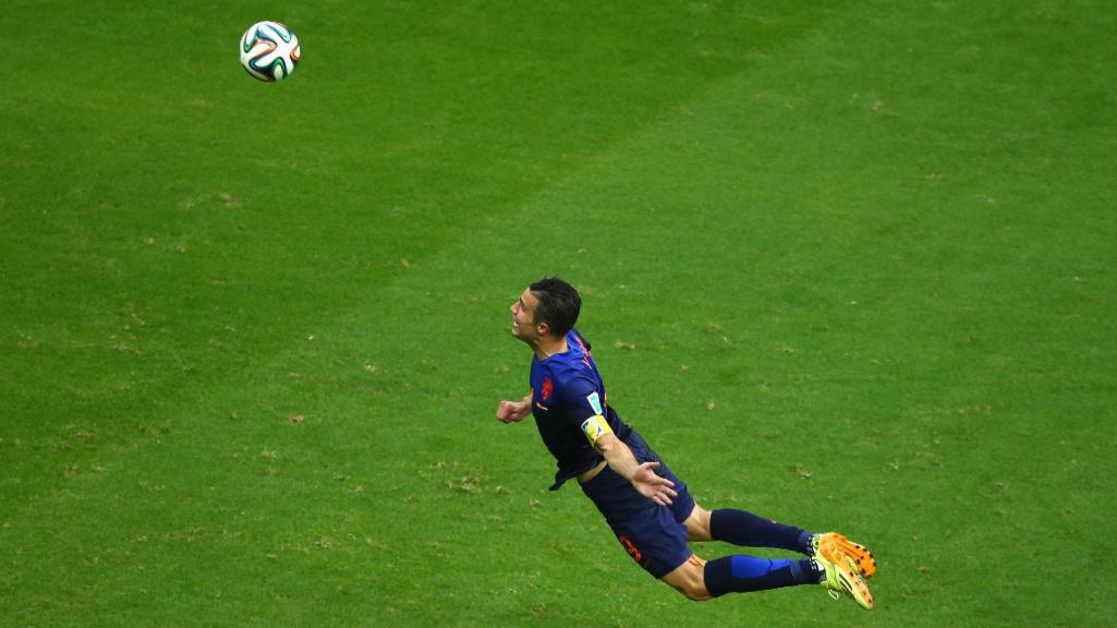 Image result for van persie flying goal