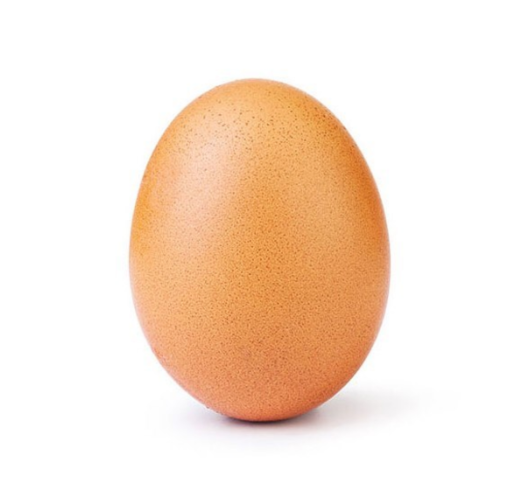 ...And the world record-breaking egg. Credit: Instagram