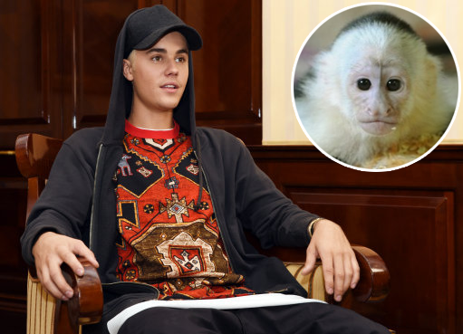 Justin Bieber poses during a press event with Mally inset. Credit: PA