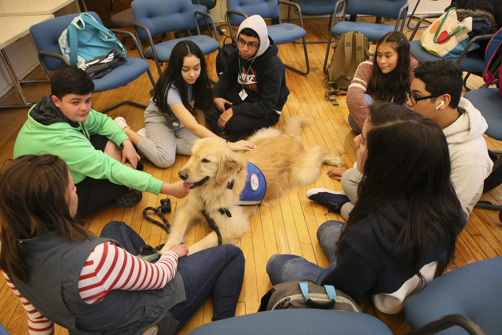 Kids play with a therapy dog to calm their nerves and anxiety. Credit: PA