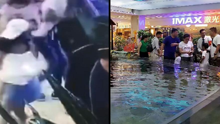 Shark Bites Little Girls Hand In Shopping Centre Fish Tank
