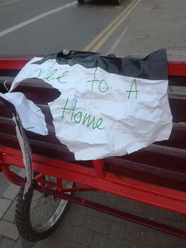 This note was stuck to the buggy next to the horse. Credit: Facebook/Jeanette L Cook