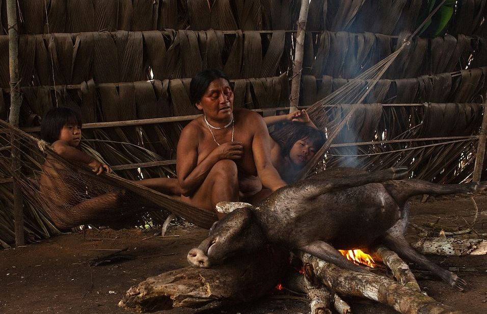 Amazing Pictures Reveal Life Inside An Amazon Tribe