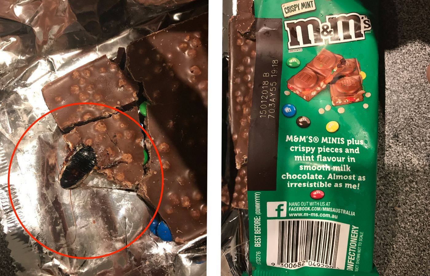Man Opens Chocolate Bar And Finds A Dead Cockroach Ladbible