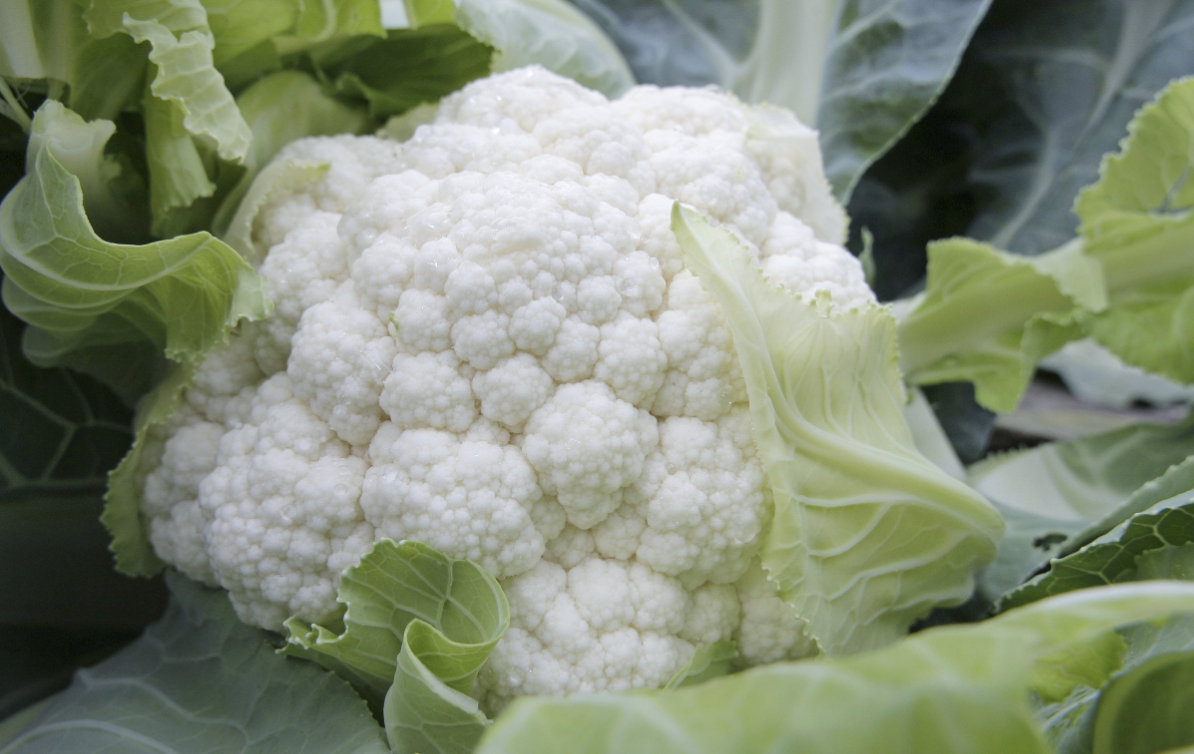 This is what cauliflowers look like before they're sliced into steaks, FYI. Credit: PA