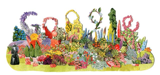 Google Doodle Gertrude Jekyll