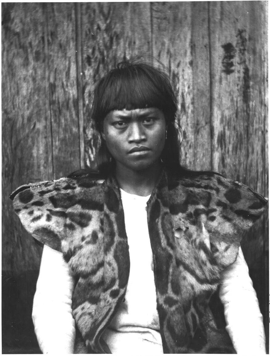 Taiwanese Aboriginal man wearing a clouded leopard fur. Credit: Anthropologist Torii Ryūzō/Creative Commons