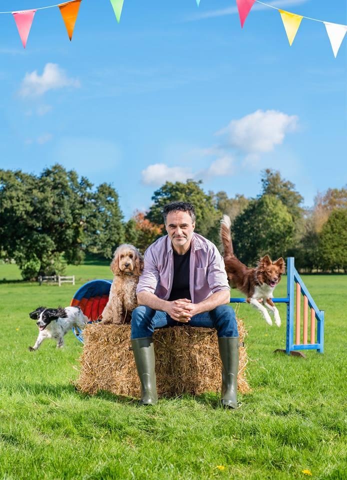 Hertfordshire Dog Training School