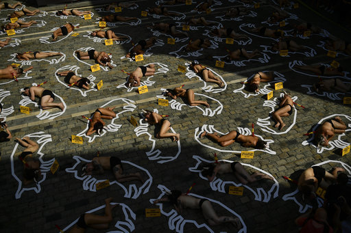 Demonstrators protest against bullfighting by lying down in front of the City Hall. Credit: PA