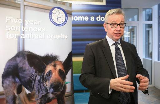 Michael Gove announces maximum five year sentences for animal abusers. Credit: PA