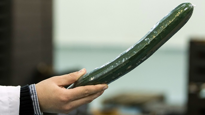 Women Advised Not To Use Cucumbers To Clean Their Vaginas
