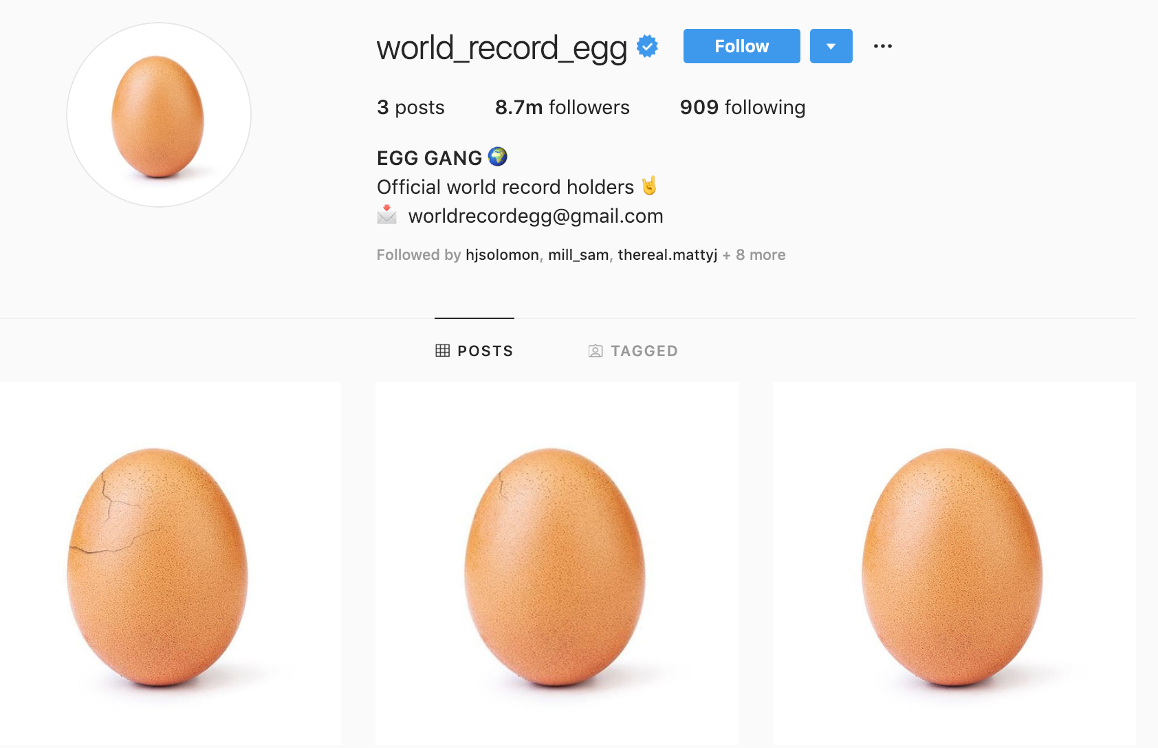 The eggs in various states of cracking. Credit: world_record_egg/Instagram