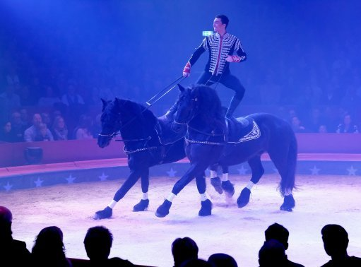 Horses in the Swiss national circus Brothers Knie. Credit PA