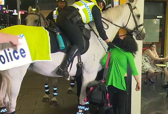 After the woman hit the horse, the officer riding it grabbed her. Credit: 7 News