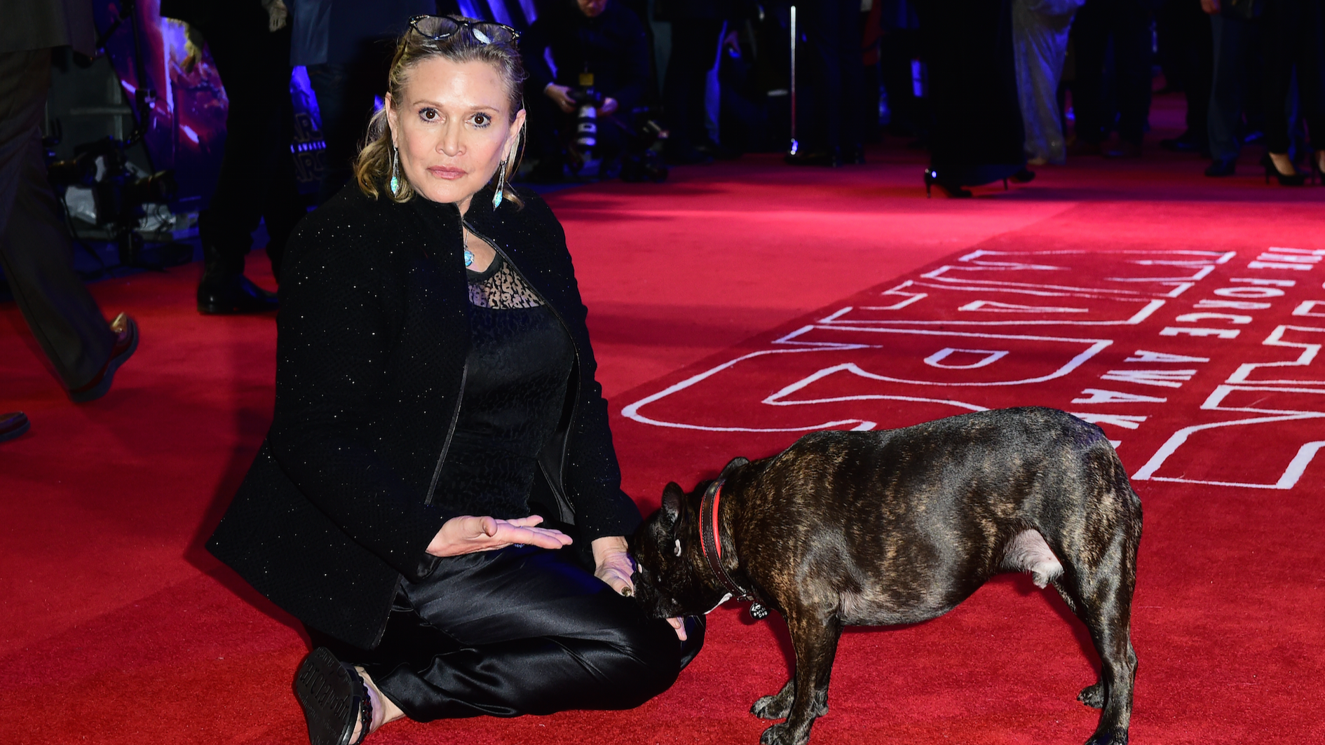 Carrie Fisher's Dog Gary Attended A Screening Of 'The Last Jedi' And Loved Seeing His Late Owner On Screen