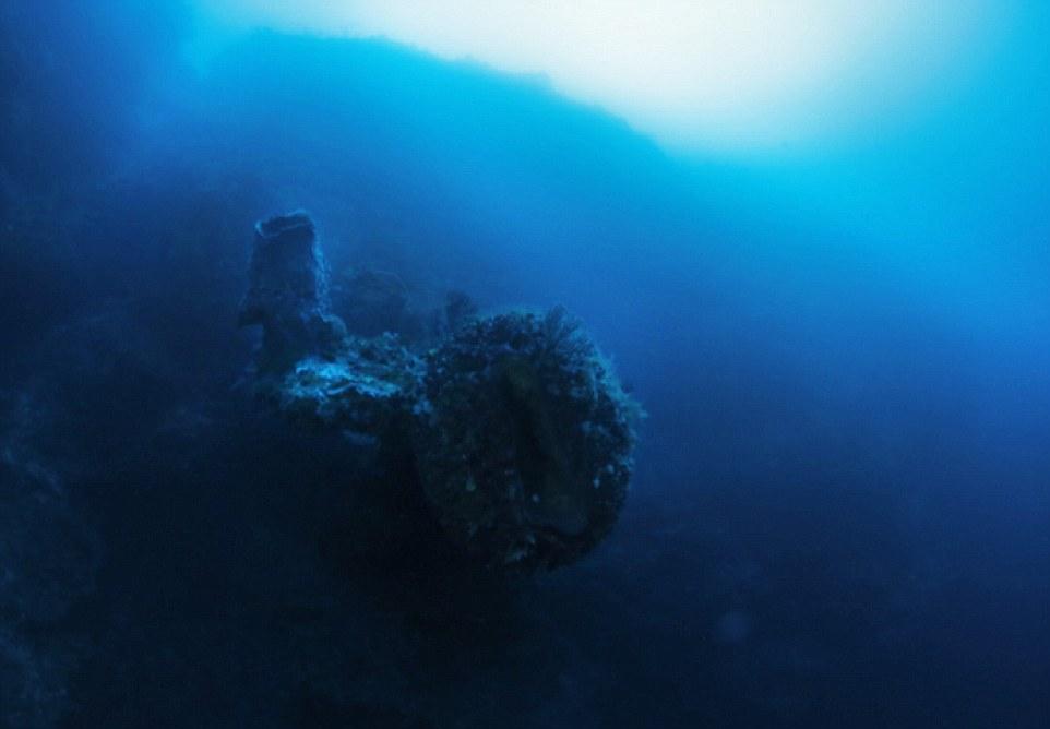 Foto di Discovery Channel