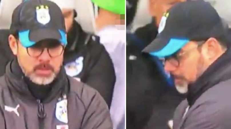 Huddersfield Substitute Drops His Shorts And Accidentally Flashes Penis On Live TV