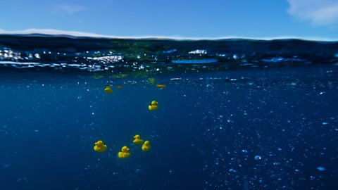 'Blue Planet II' Viewers Scream Conspiracy Over Plastic Duck Footage