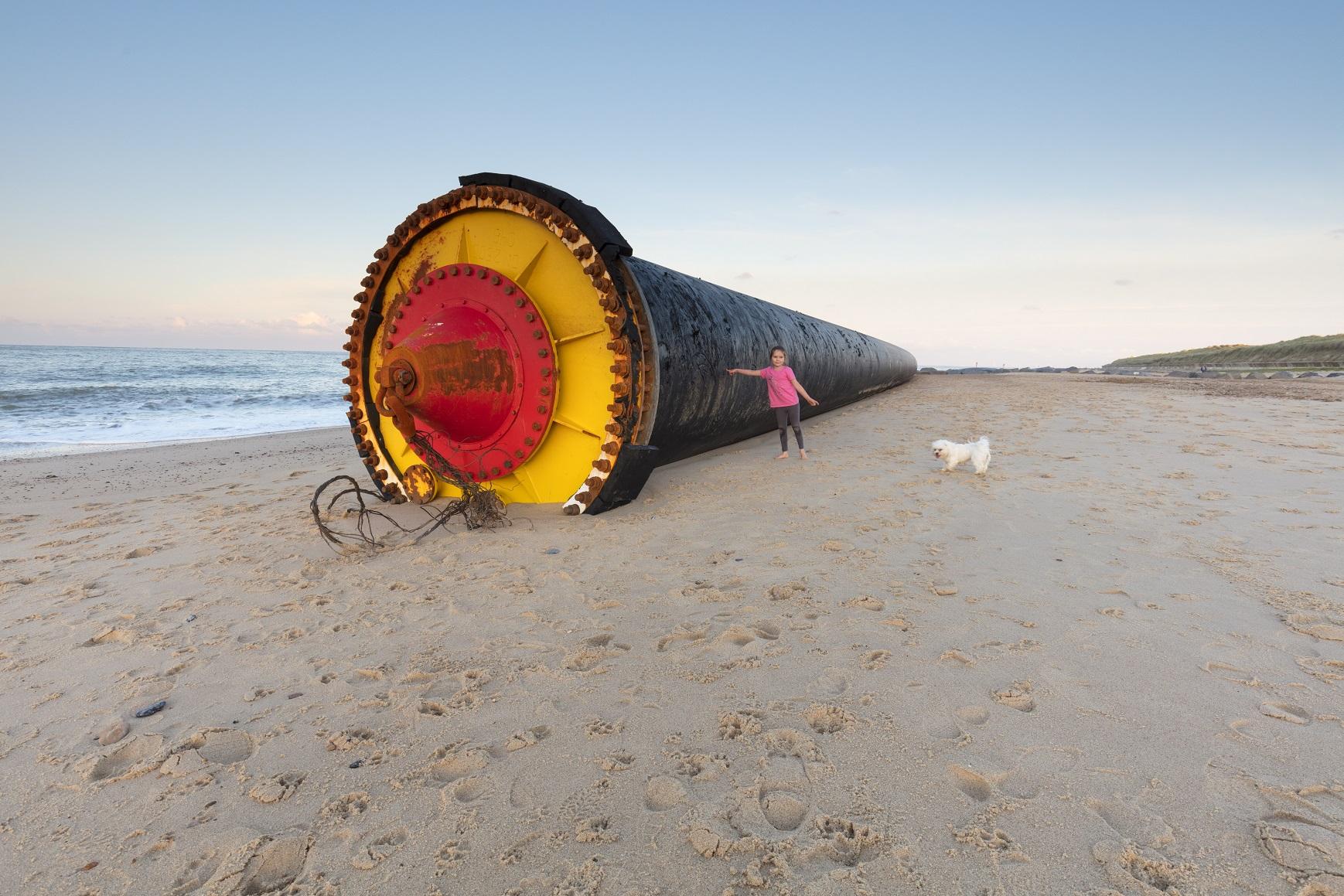 Tubes washed ashore