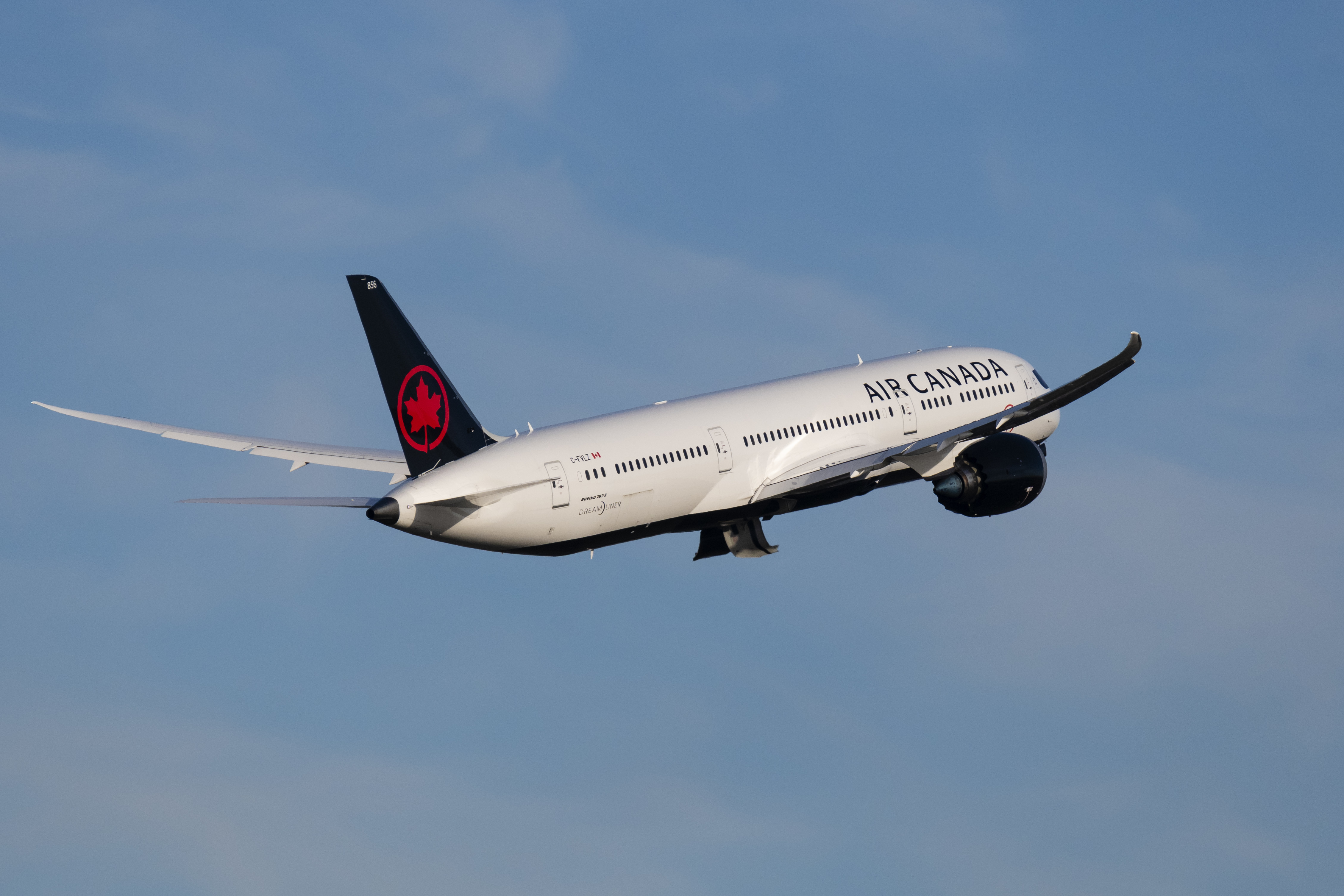 Air Canada passenger 'wakes up alone on dark, locked plane'