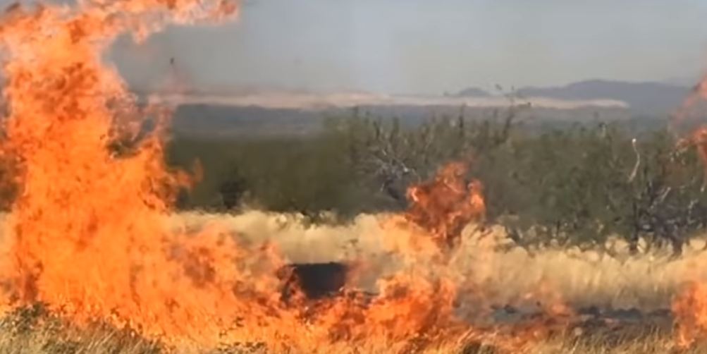 Gender-reveal party explosion starts massive wildfire