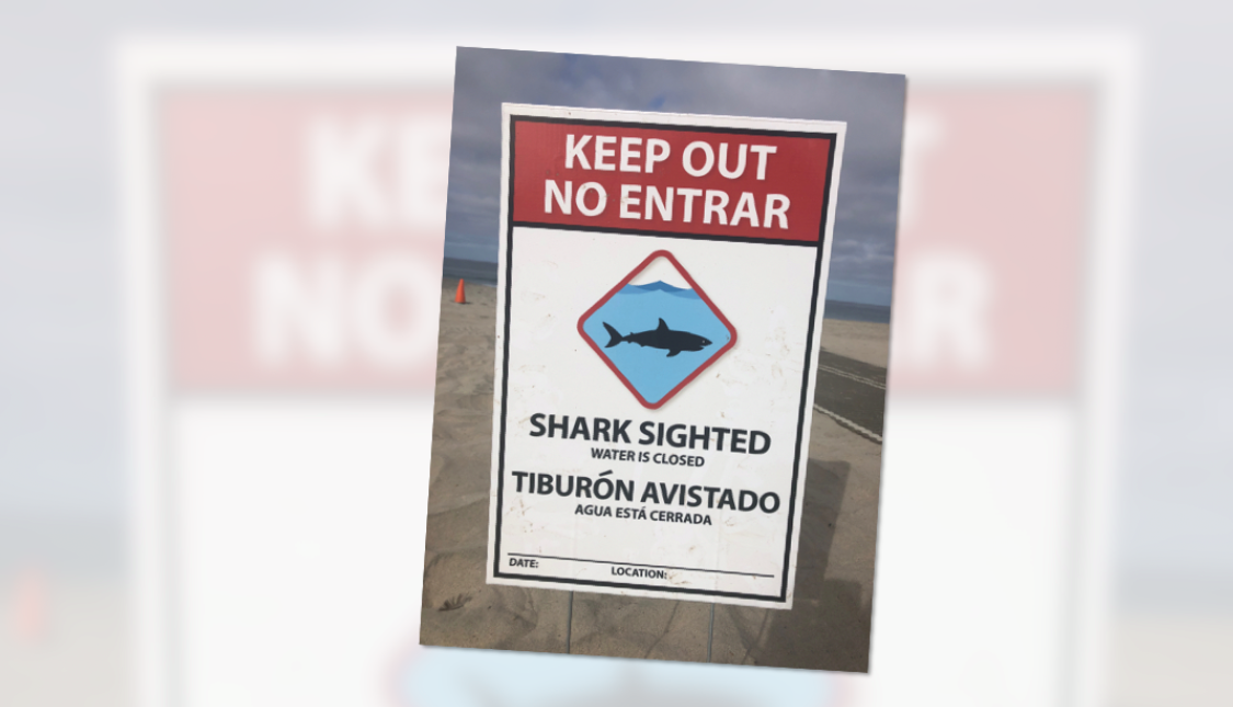 Teen attacked by shark at U.S. beach