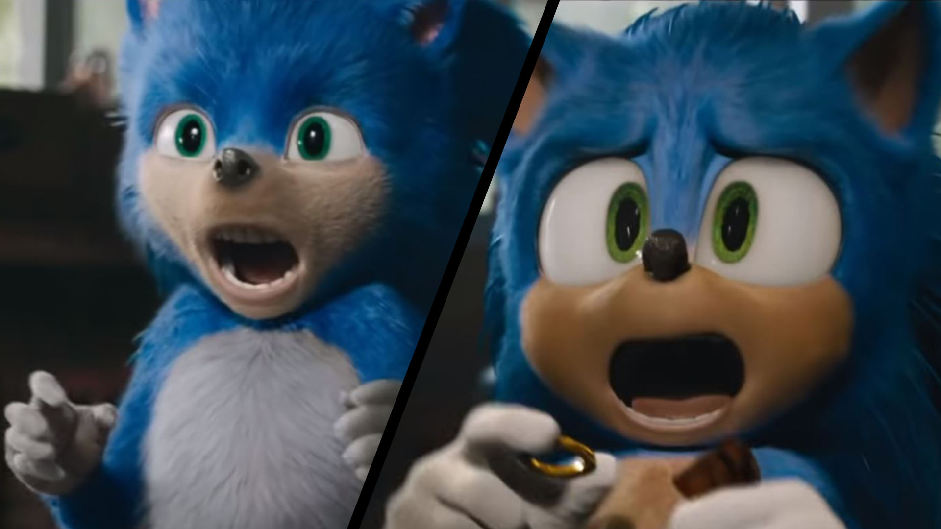 Studio That Redesigned Sonic The Hedgehog Is Shut Down Before Christmas Ladbible