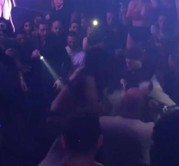 'Animal abuse': Horse brought into Miami nightclub throws off bikini-clad rider