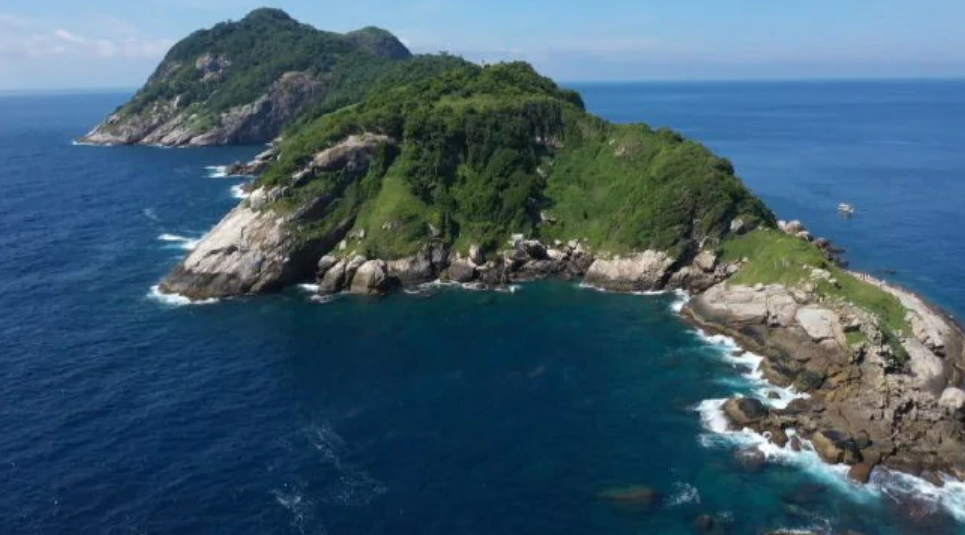 'Snake Island' is as undesirable a holiday destination as it sounds. Credit: 9 News