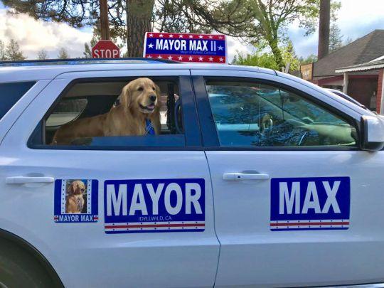 Credit: Facebook/Mayor Max