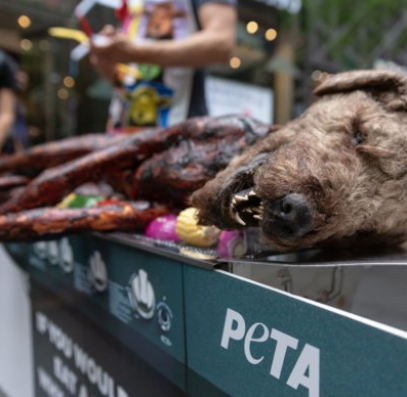PETA's dog prop left many people horrified, which was the intended reaction. Credit: PETA