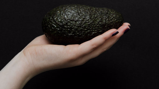 'Avocado Hand' Is A New Horrifying Injury Trend That's Affecting Loads Of People