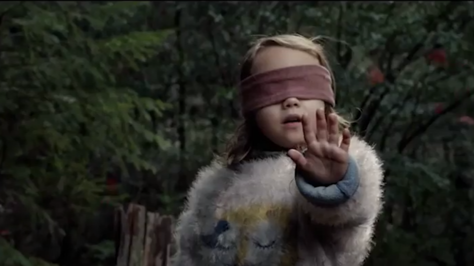 People Are Obsessed With Netflix's 'Bird Box' And The Memes Are Twitter Gold