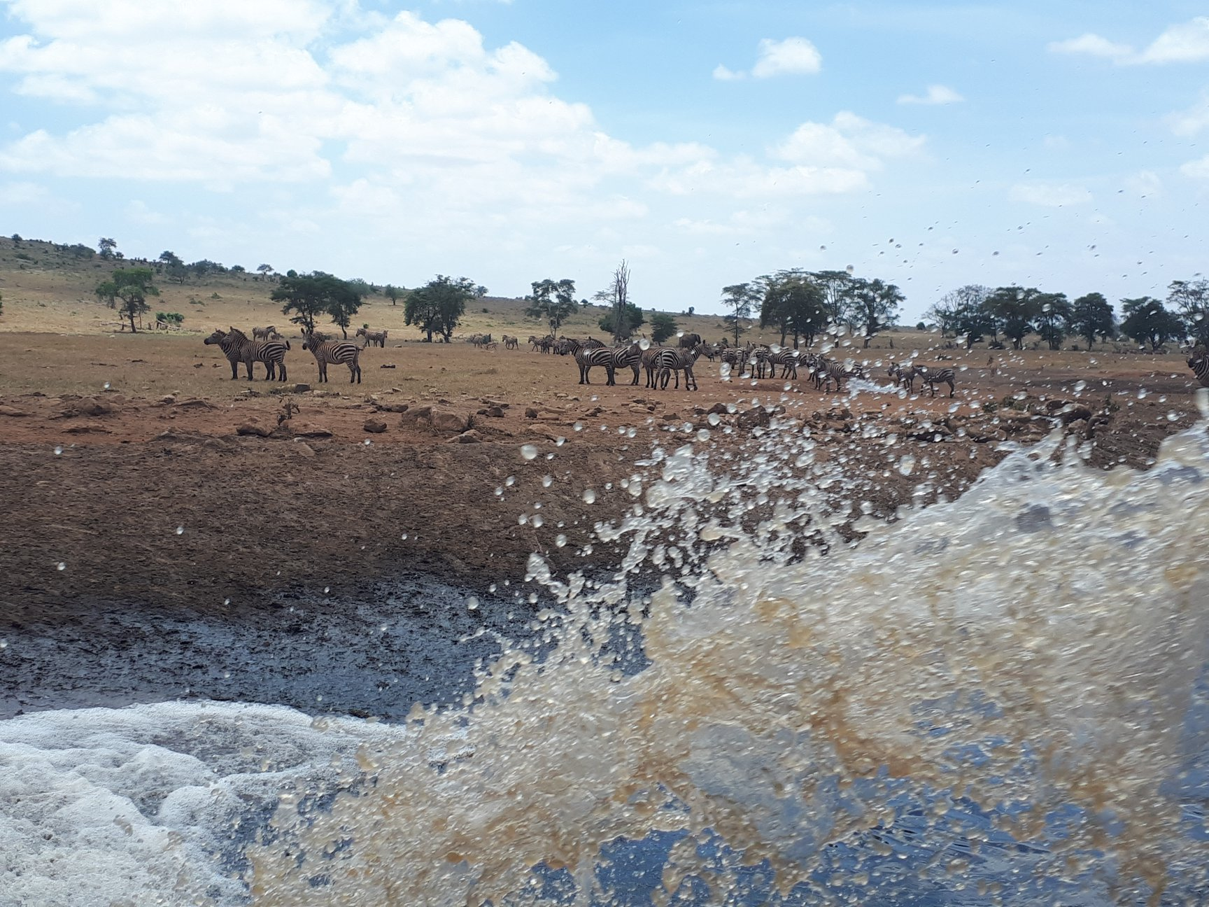 Der Farmer bringt Wasser in den Tsavo West National Park in Kenia. Bildnachweis: Patrick Killonzo Mwalua