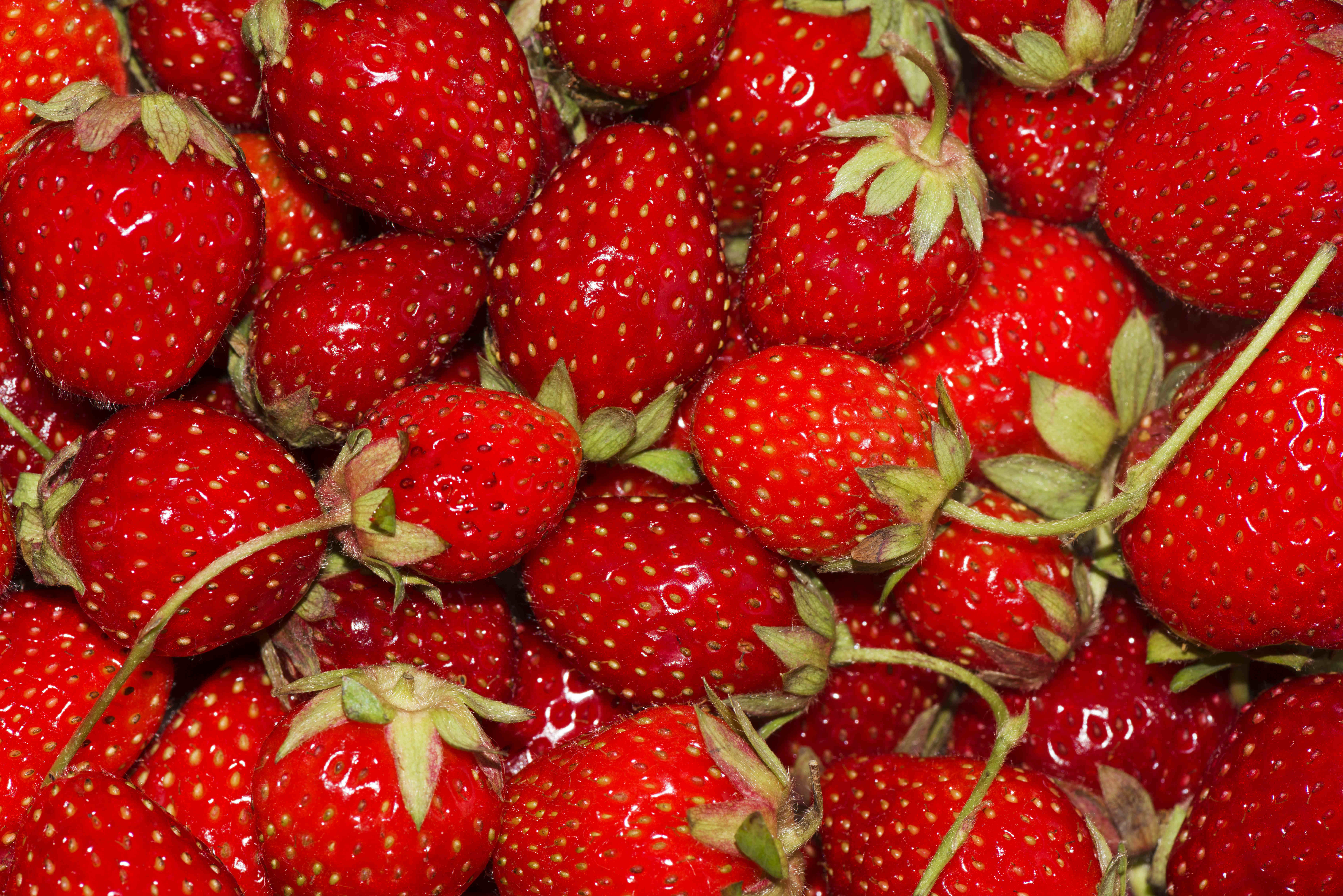 There were over 100 reports of sewing needles being found inside strawberries. Credit: PA
