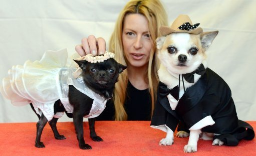 This woman has anthropomorphised the fuck out of these dogs. Credit: PA