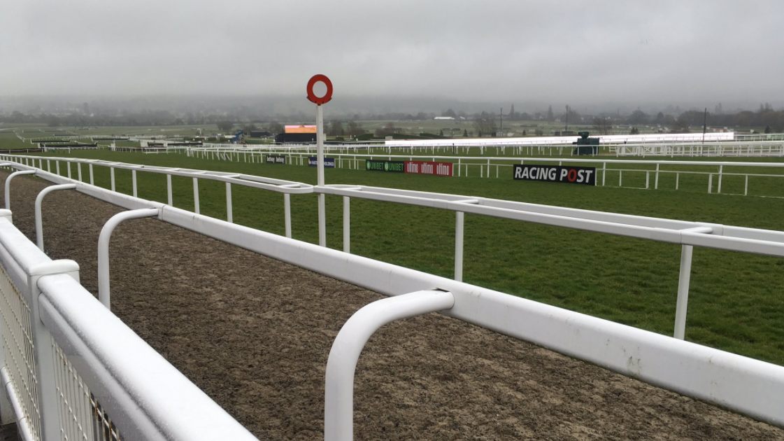 Cheltenham Festival Day One: All The Tips You Need
